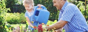 Personal Insurance Watering Can Garden